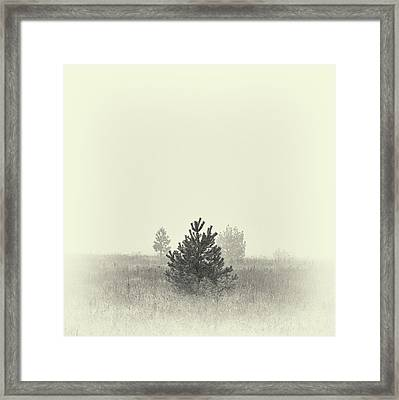 Framed Print featuring the photograph Mist In The Valley. Horytsya, 2018. by Andriy Maykovskyi