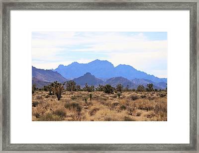 Mojave Framed Print