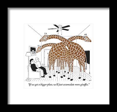 Animal Place Framed Prints