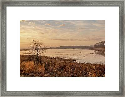 Framed Print featuring the photograph Morning At Boombay Hook by Kristia Adams