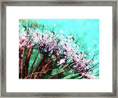 Morning Dew On Dandelions Framed Print