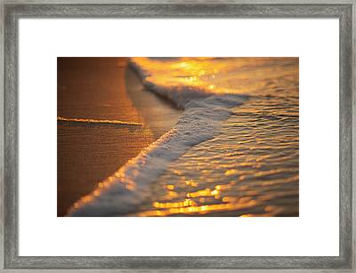 Morning Shoreline Framed Print