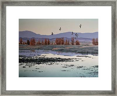 Framed Print featuring the painting Morning Sprig by Peter Mathios