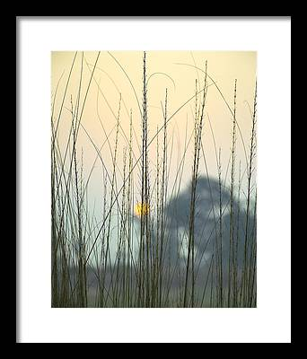 Winter Framed Prints