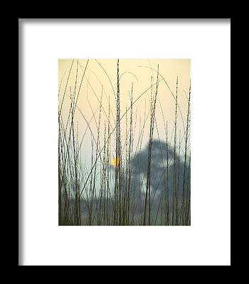Winter Landscapes Framed Prints