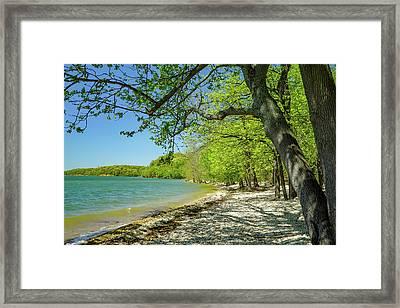 Moss Creek Beach Framed Print