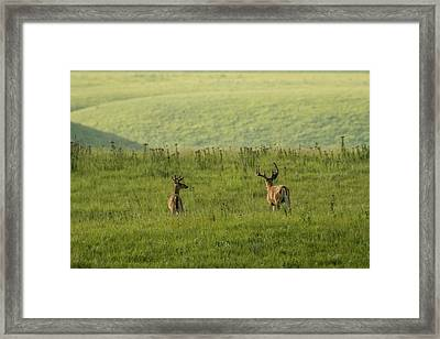 Framed Print featuring the photograph Moving Across The Prairie by Scott Bean