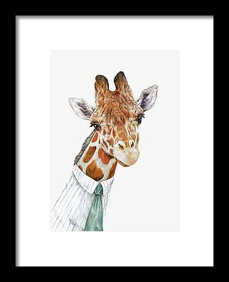 Animals In Clothes Framed Prints