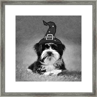 Framed Print featuring the photograph Mr. Wizard by Sue Collura