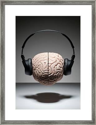 Music On The Brain Framed Print by David Crockett