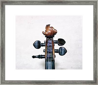 Musical Toupee Framed Print by Steven Digman
