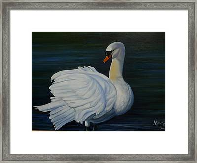 Mute Swan Framed Print by Janet Silkoff
