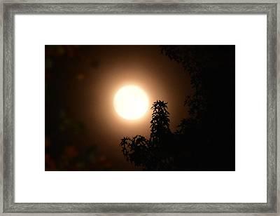 My Hunters Moon Framed Print