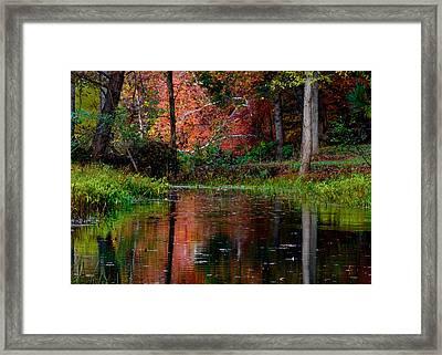 My Secret Place Framed Print