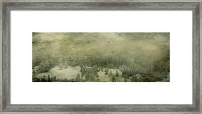 Mystic Wood Framed Print