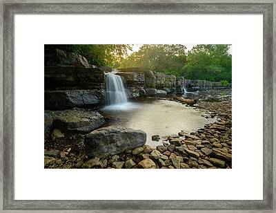 Nature's Design Framed Print