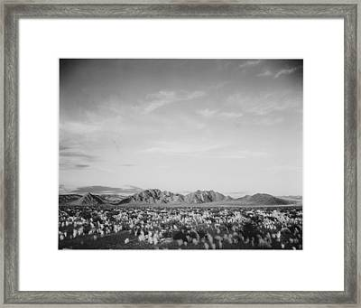 Near Death Valley National Monument Framed Print