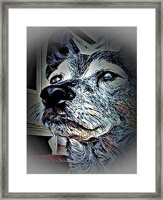 Noble Beast Framed Print