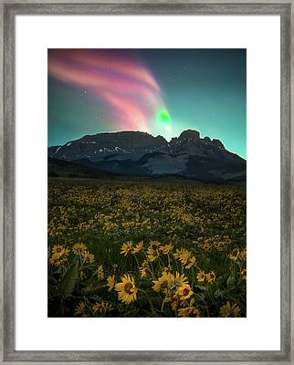 Framed Print featuring the photograph Northern Light Show / Augusta, Montana  by Nicholas Parker