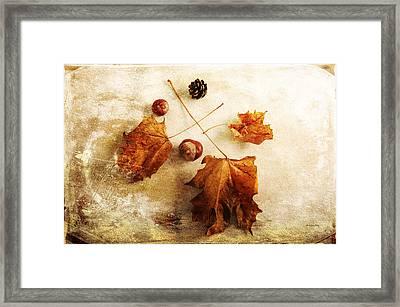 Framed Print featuring the photograph November Mood by Randi Grace Nilsberg