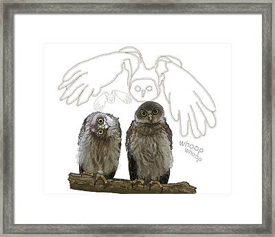 O Is For Owl Framed Print
