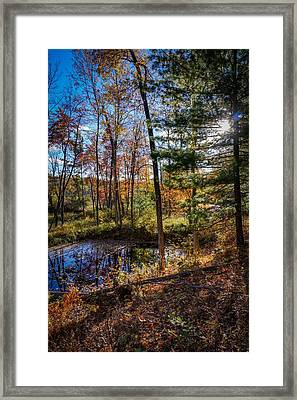 October Late Afternoon Framed Print