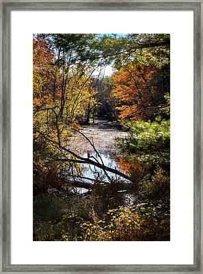 Framed Print featuring the photograph October Window by Kendall McKernon