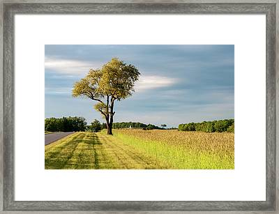 Off The Road Framed Print