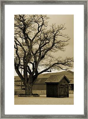 Old Shanty In Sepia Framed Print