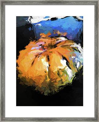 Orange Pumpkin Framed Print