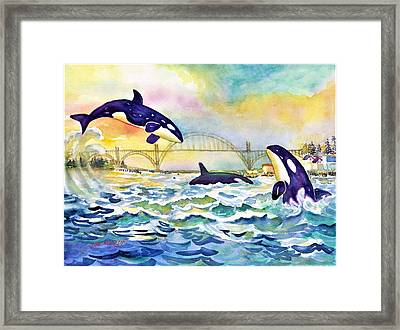 Orcas In Yaquina Bay Framed Print