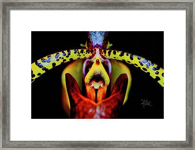 Orchid Study Six Framed Print