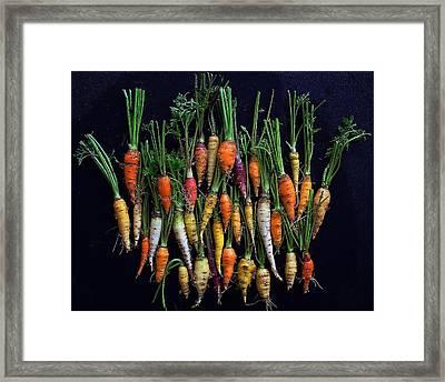 Organic Rainbow Carrots Framed Print