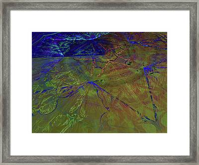 Organica 3 Framed Print