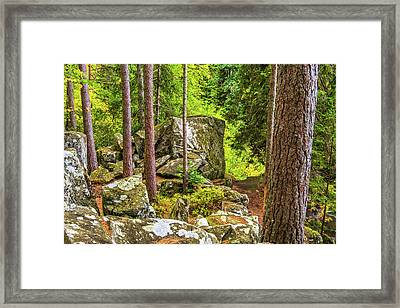 Ossian's Seat, The Hermitage, Perthshire Framed Print by David Ross