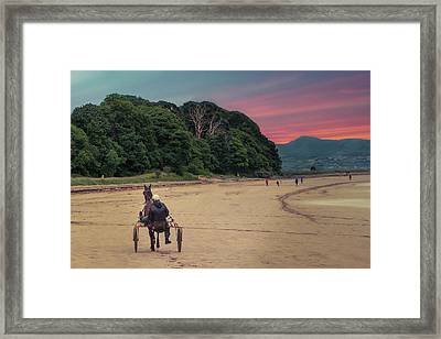 Out For A Spin Framed Print
