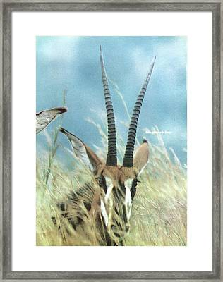 Overleaf Of Cover Of Life Magazine Dated Framed Print by John Dominis