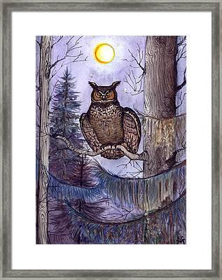 Owl Amid The Evergreen Framed Print
