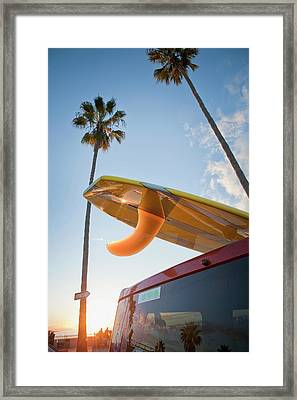Paddleboard On Top Of Car With Palm Framed Print