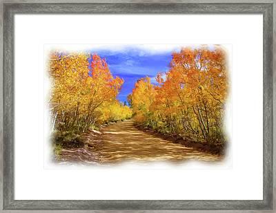 Painted Aspens Framed Print