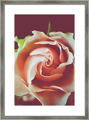 Framed Print featuring the photograph Painted by Michelle Wermuth