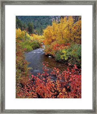 Palisades Creek Canyon Autumn Framed Print by Leland D Howard