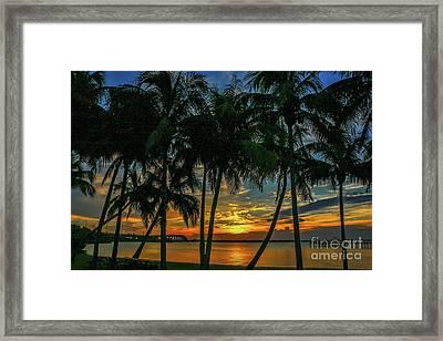 Palm Tree Lagoon Sunrise Framed Print
