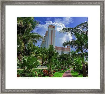 Palms At The Riu Cancun Framed Print