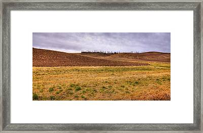 Framed Print featuring the photograph Palouse Farmland by David Patterson