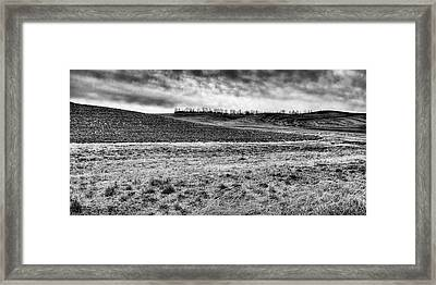 Framed Print featuring the photograph Palouse Treeline by David Patterson
