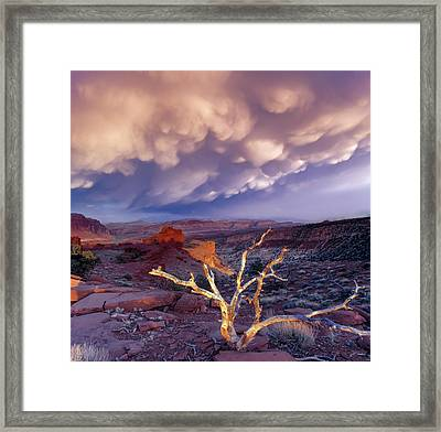 Panorama Point Framed Print by Leland D Howard