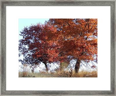 Passing Autumn Framed Print