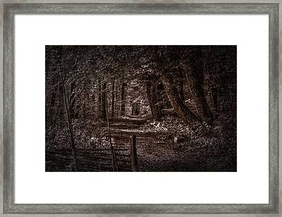 Path In Forest #i0 Framed Print