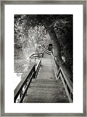 Framed Print featuring the photograph Pathway by Michelle Wermuth